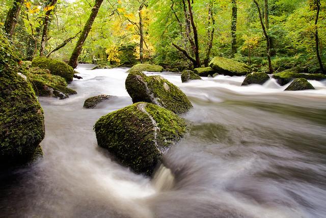Rushing River Teign