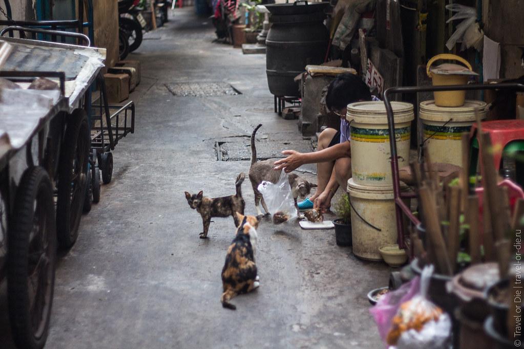 Chinatown-Bangkok-Китайский-квартал-9450