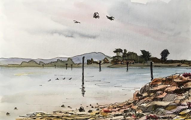 191014 Bodega Bay CA