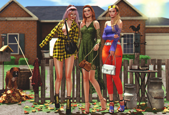 LOOK-1015:We're tired of cleaning the yard, let's go girls