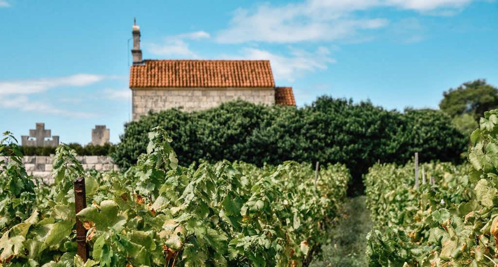 Wijn proeven op Korčula, Kroatië | Mooistestedentrips.nl