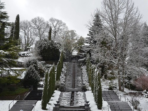 There's nothing like a winter garden. From A Unique Christmas Experience: Winter Magic on Mainau Island
