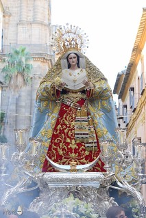 rosario 35