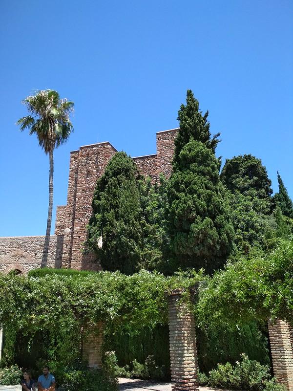 Крепость Малаги - Деревья вдоль стены