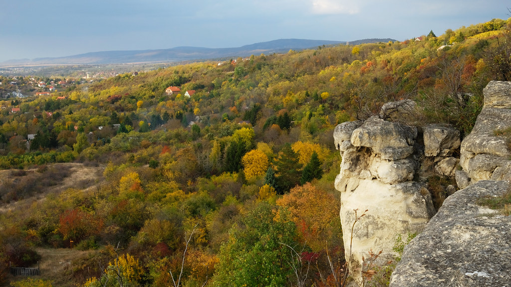 Autumn in the Buda Hills, Hungary