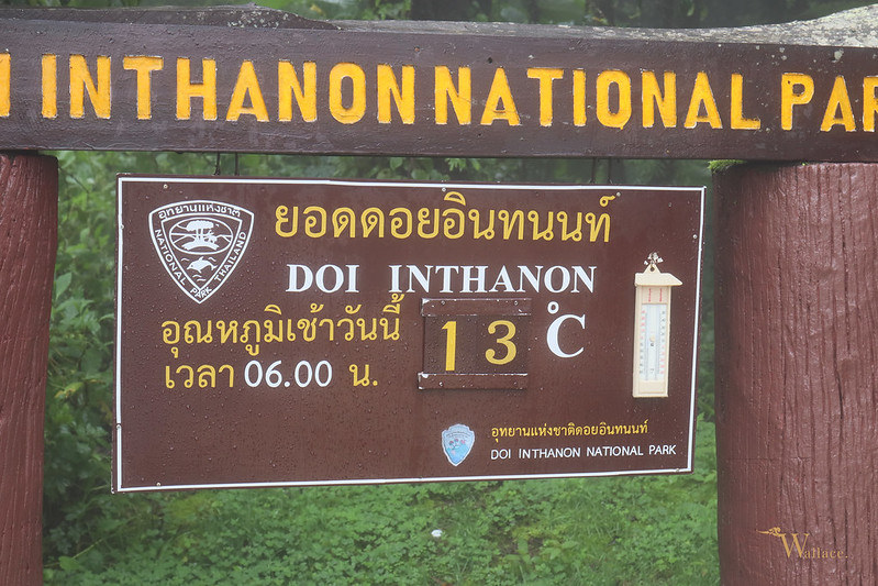 Doi Inthanon