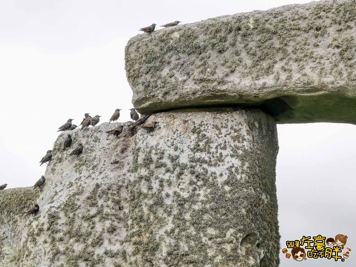 英國景點英國巨石陣Stonehenge世界文化遺產-39