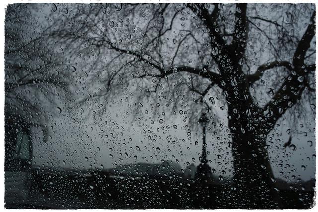 London rain. 22 january 2016.