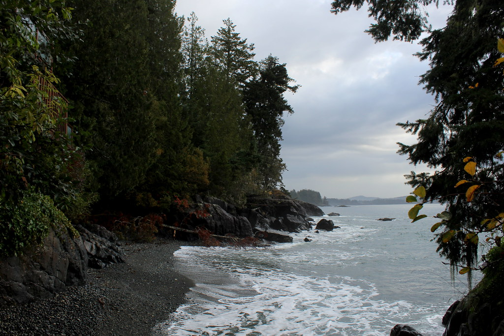 The Coast at Otter's Point