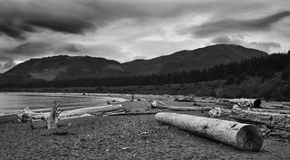 Port Renfrew | by Tucpasquic