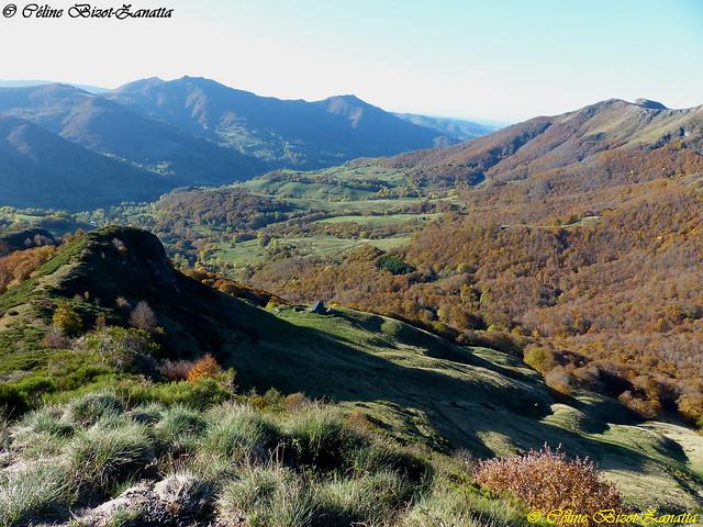 L' Automne dans toute sa splendeur en Montagne - Puy-Mary - Cantal - Auvergne - France - Europe