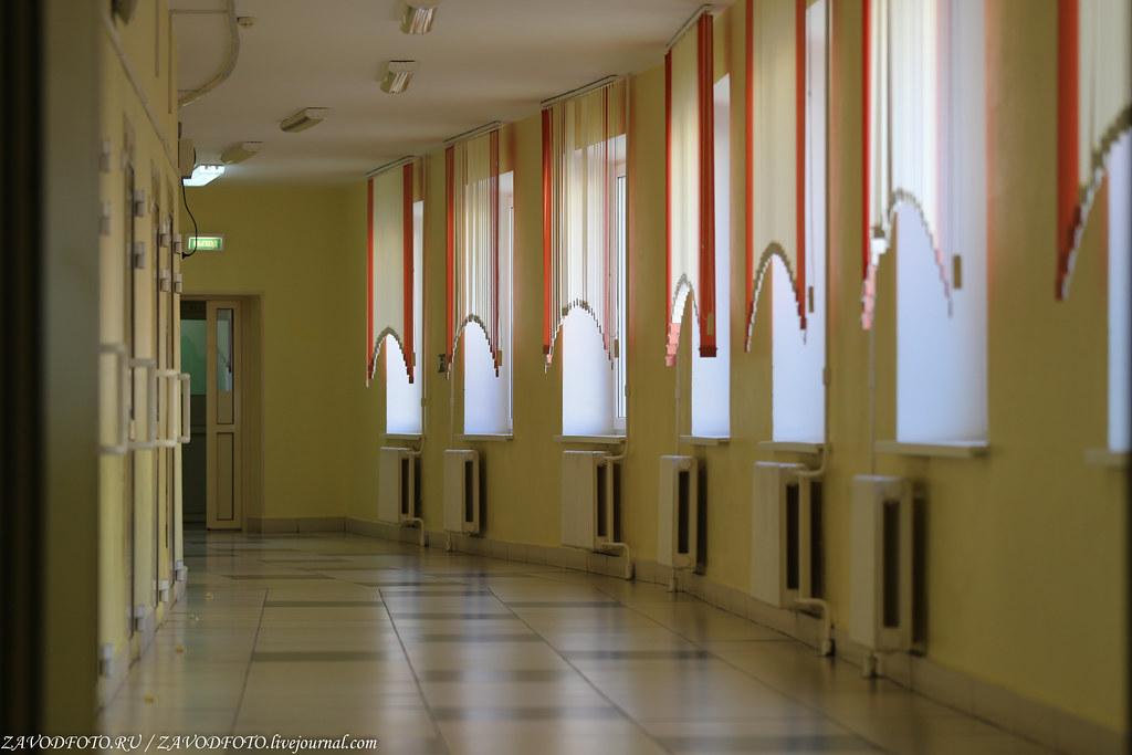 Есть большая вероятность, что российские школы обойдутся без четвертой четверти IMG_2925