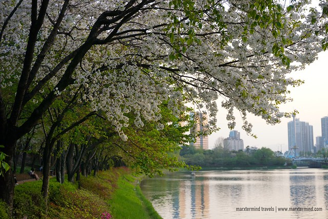 Seokchon Lake Park Seoul
