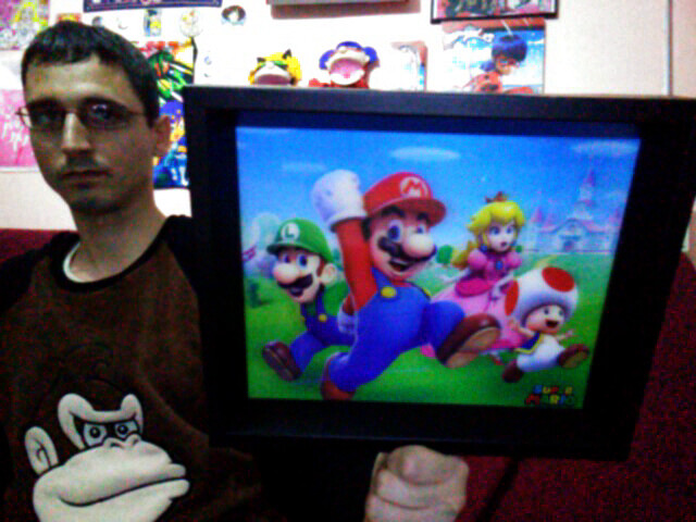 Super Mario - Mario, Luigi, Peach and Toad Amazing 3D Collector's Limited Edition Frame / Cuadro 3D