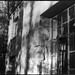 exterior details, architecture, Winnsborough Lodge, Montreat Conference Center, near Black Mountain, NC, Pentax Spotomatic,,Super Takumar 50mm f-1.4,  HC-110 developer, 10.21.19 (1 of 1)