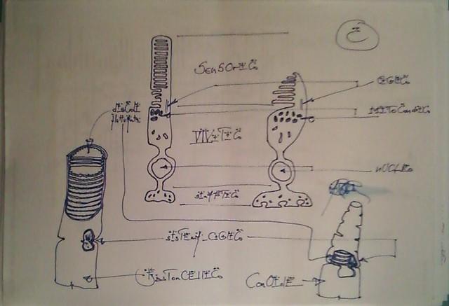 EC_miei_apPunti_mio_Ing._Timbrato_brevetto_Oculo_sintetico