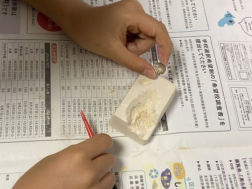 小学8年生 付録 アンモナイト化石 発掘
