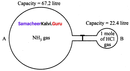 Samacheer Kalvi 10th Science Solutions Chapter 7 Atoms and Molecules 8