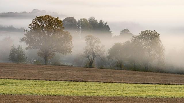 *Volcanic Eifel autumn* - *Vulkaneifel-Herbst*