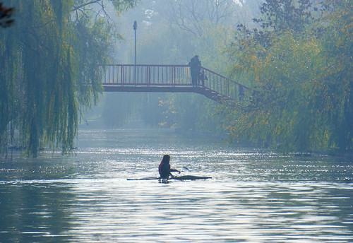 park morning autumn people lake fall water weather fog landscape românia bucurești sector3