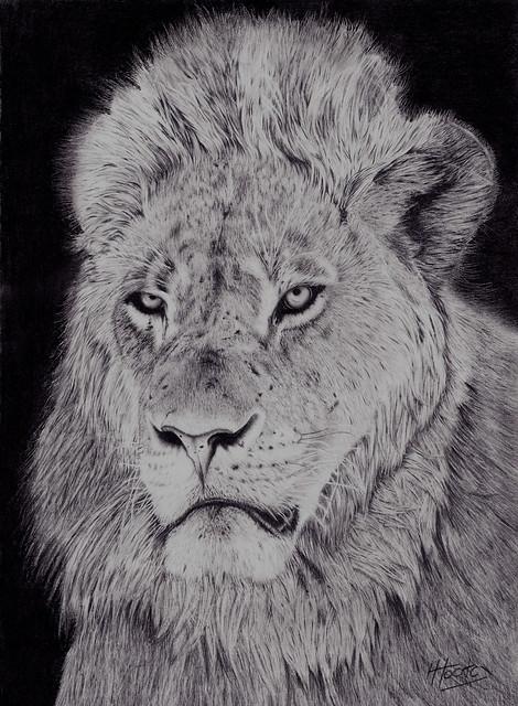 King of Mana