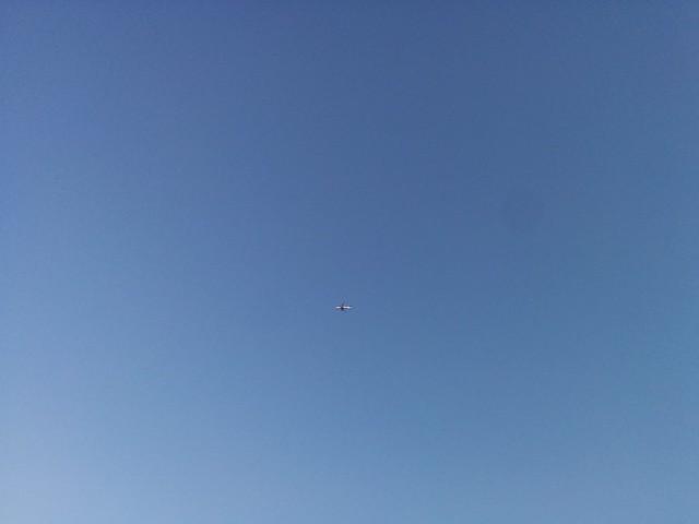 Plane in blue sky #toronto #etiennebrulepark #humberriver #fall #blue #sky #plane