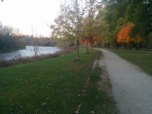 Curving path #toronto #humberriver #fall #autumn #yellow #path