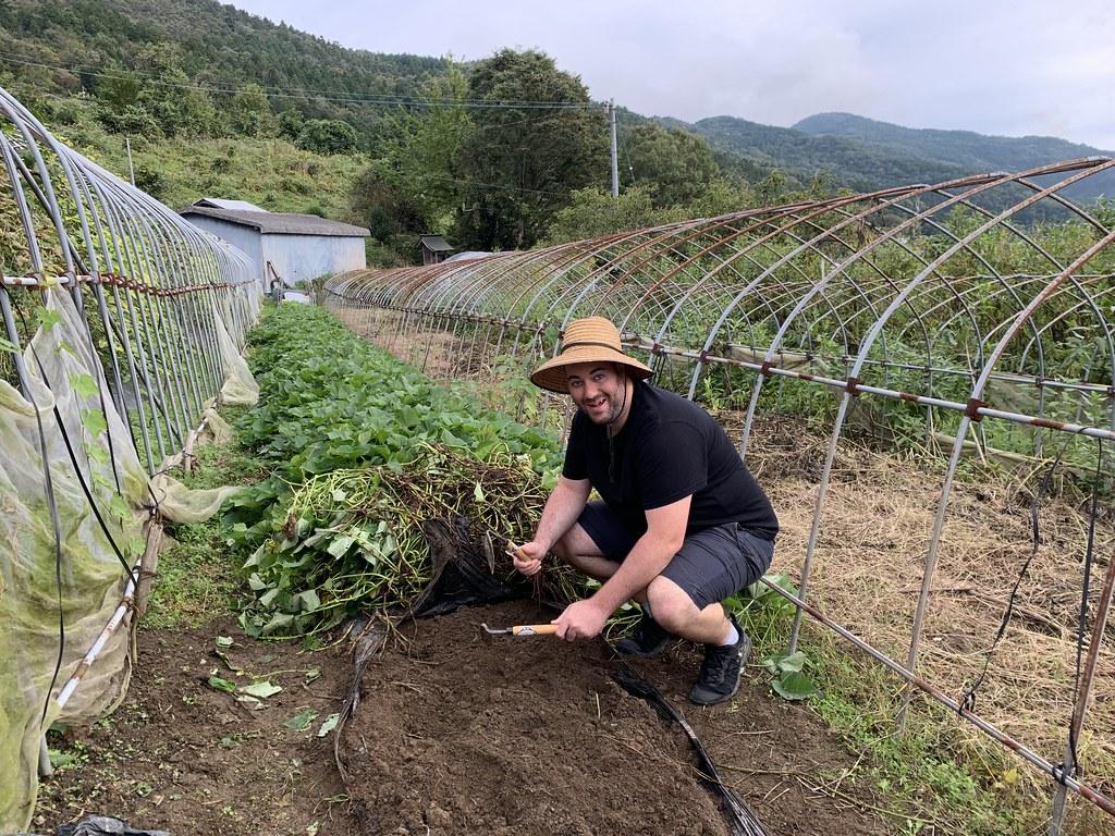 Shikoku, Japan 2019 289 острова Сикоку Изучение острова Сикоку, Япония 48980085141 7d7bdd92e7 b