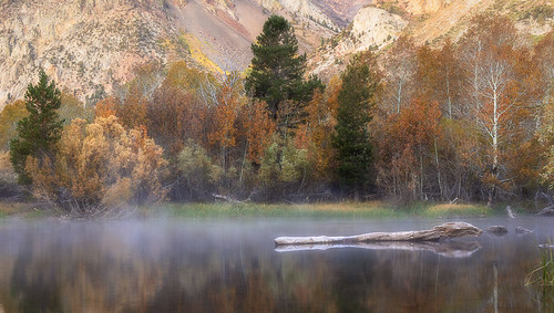Rush Creek Mist and Reflections