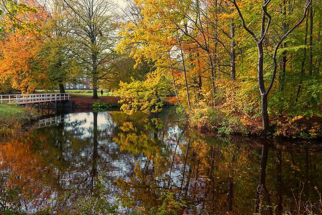 Herfst in Clingendael