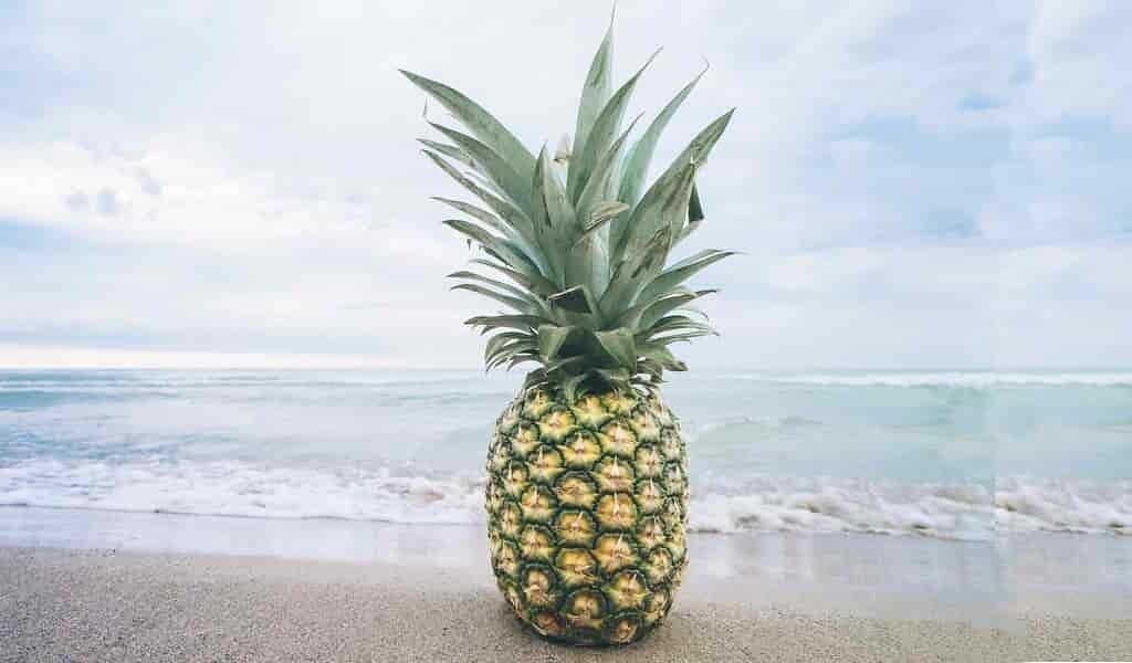 du-gel-ananas-maintenir-les-boissons-froides-ou-chaudes