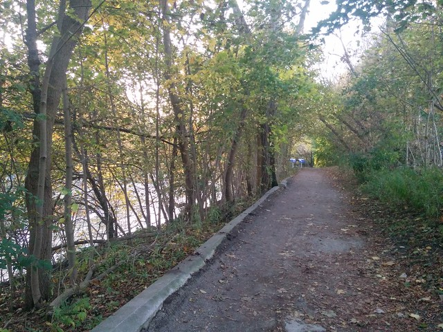 Path above the river #toronto #humberriver #fall #autumn #path