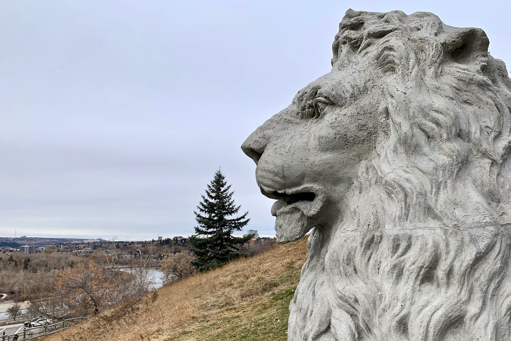 Lion looking over the city