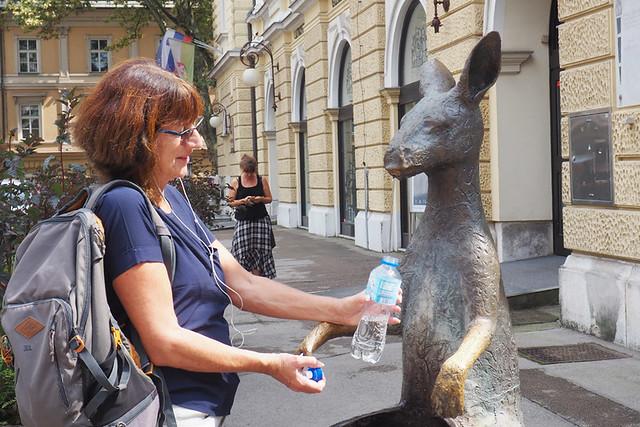 Drinking kangaroo spit, Ljubljana, Slovenia