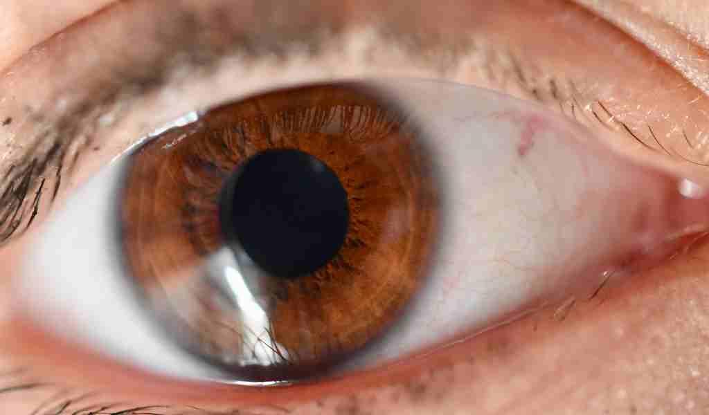 simplement-penser-à-la-lumière-change-la-taille-des-pupilles
