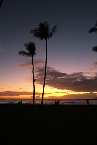 sunset sundown evening konainnrestaurant konainnshoppingcenter konainn kailuakona kailuabay clouds sky ocean sea pacificocean palms palmtrees nature beautiful hawaii hawaiiisland hawaiicounty hawaiianislands polynesia sandwichislands island tropical outdoor 2019 barryfackler barronfackler explore inexplore explored