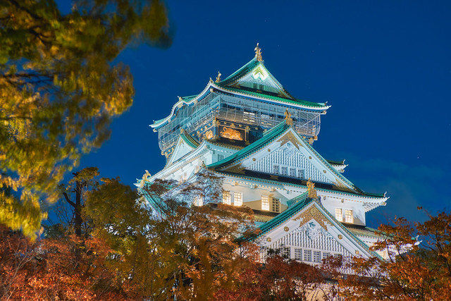 大阪城の夜景