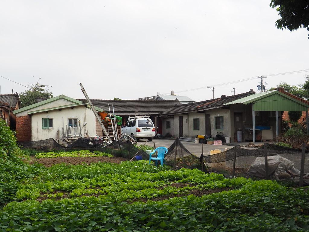 嘉義六腳鄉景點用九柑仔店拍攝場景旅遊趣 (25)