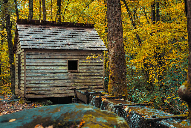 Historic Mill on the Roaring Fork Motor Nature Trail