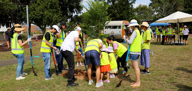Delivering Brisbane's Future Blueprint - Street tree planting program