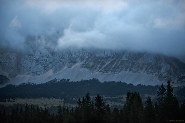 Forêts et prairies sous les nuages - in Explore