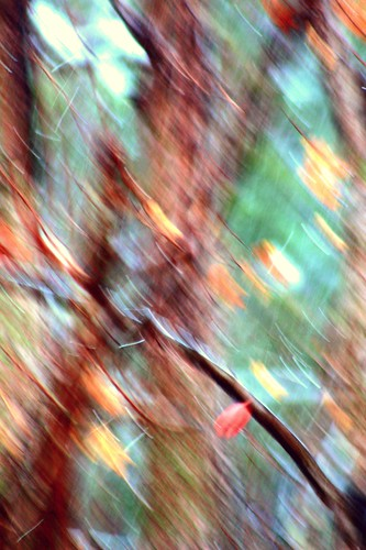 ICM...abstract of autumn....(Explored)
