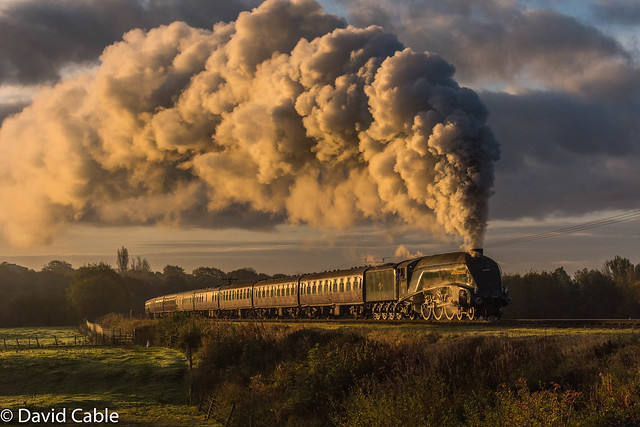 60009 USA - Burrs Early Morning 2