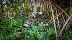 Car in camoflague