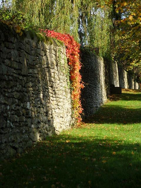 Autumn Stripes