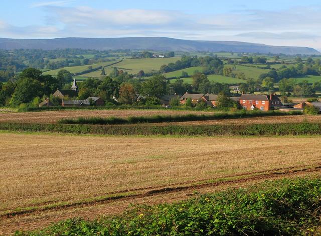 Golden Valley: view towards Vowchurch