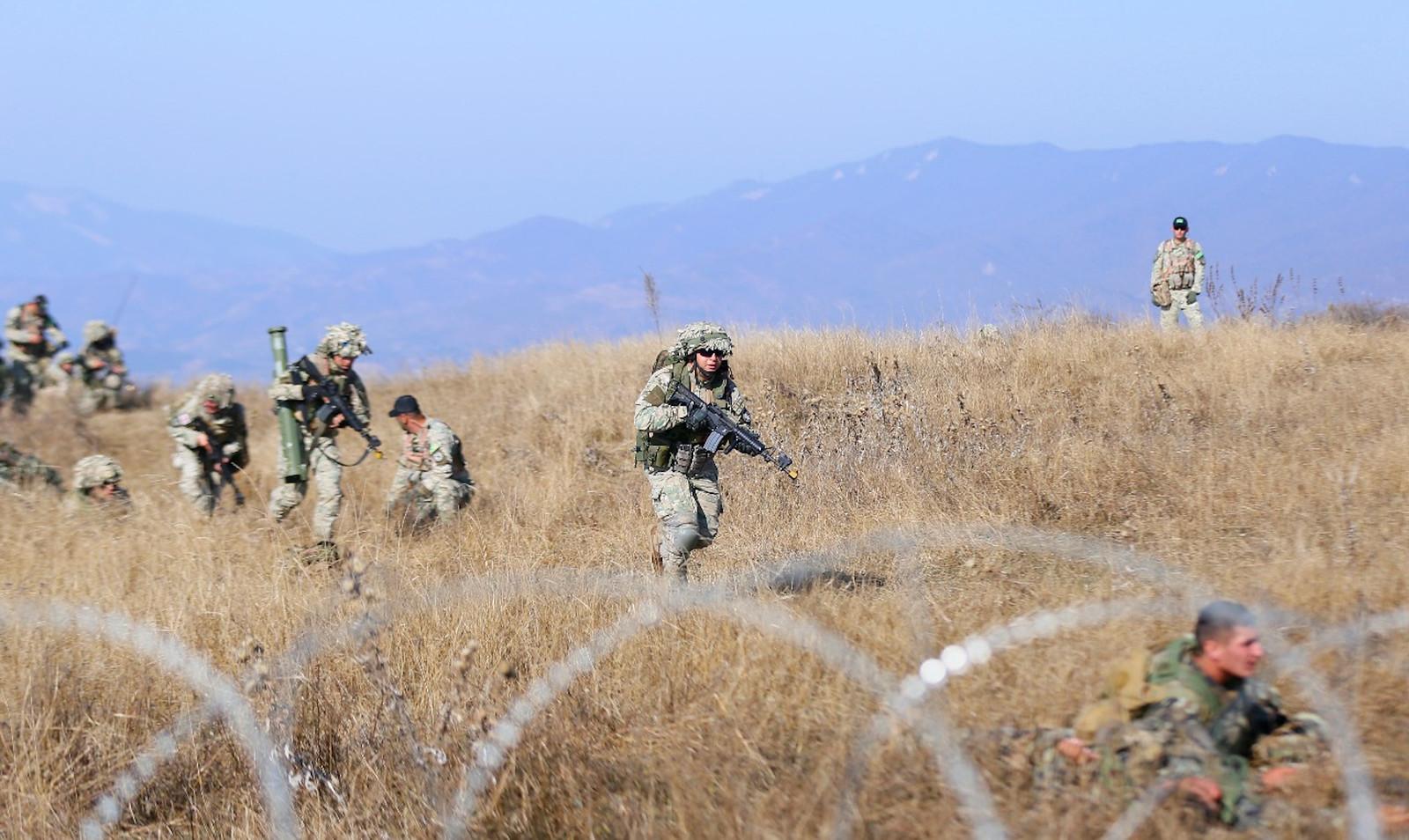 Armée Géorgienne - Page 4 48985004868_055ac8c498_h