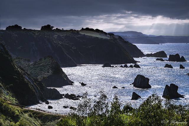 Novellana, Asturias 2019