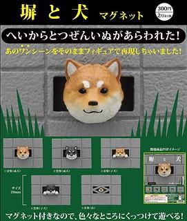 這也可以轉蛋化?奇譚俱樂部「從牆壁洞探頭的柴犬」磁鐵轉蛋(キタンクラブ 塀と犬) 全5種 爆笑登場
