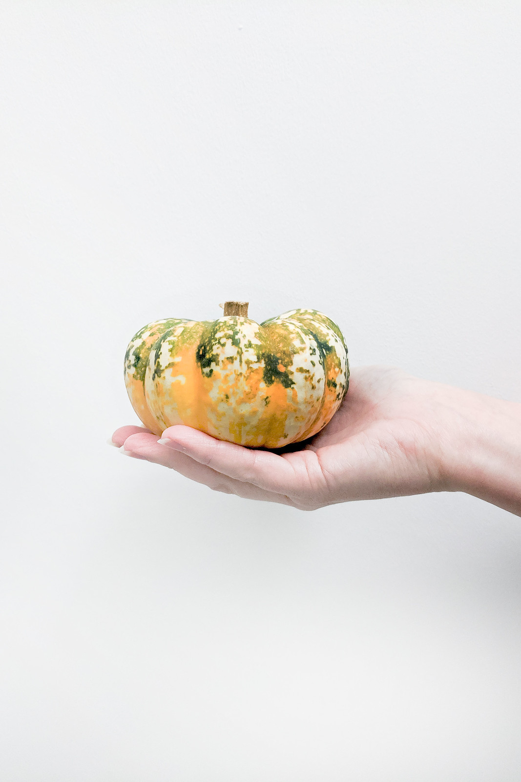 A Zero Waste Halloween For Adults